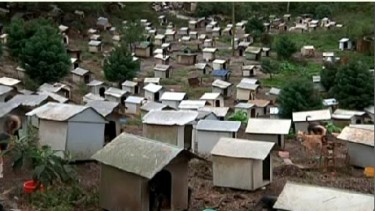 Brazils Dog Favelas