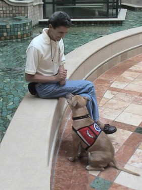 Victory for Service Dogs: Canine Profiling Outlawed