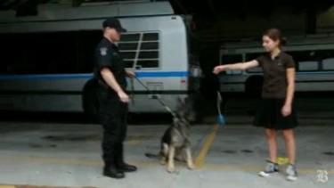 Teen Good Samaritan Raises Funds for Police Dog Armor