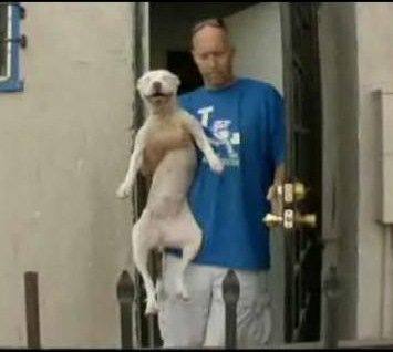 Caught on Camera: Animal Rights Advocate Arrested for Rescuing Abandoned Dogs from Foreclosed LA Home