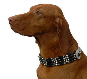 Get Stylish Collar Contest