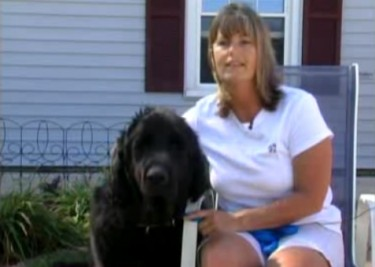 Vet Tech Gives Dogs a Second Chance: Donor Pays for Vet School