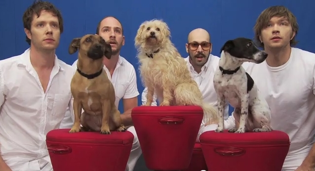 OK Go Adds Dogs to the Mix: White Knuckles Video