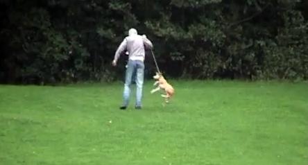 Caught on Camera:  Abuser Kicks, Strangles Dog