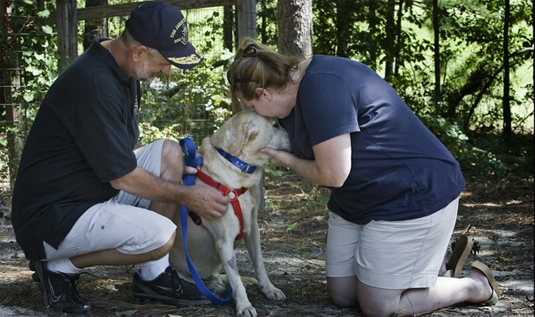 PTSD Afflicted Dog of War Adopted by Family of Fallen Hero