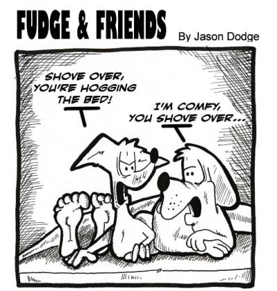 Fudge and Friends