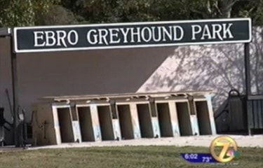 Additional Charges Possible in Greyhound Starvation Case