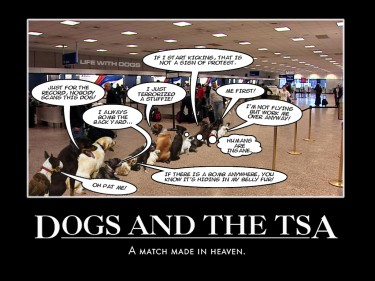 Dogs and the TSA