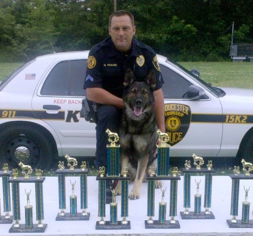 Police Dog Killed in Line of Duty