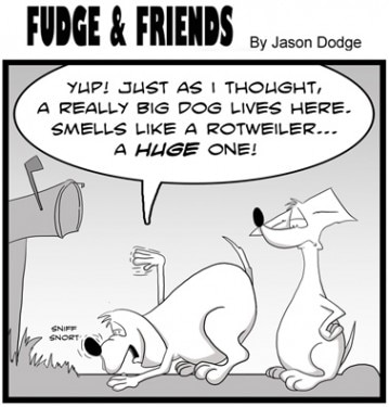 Fudge and Friends