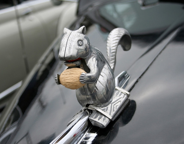 Poetry in Motion: Canine Hood Ornaments