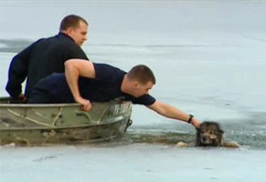 dramatic ice rescue