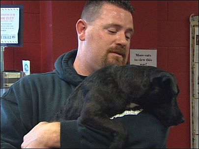 Missing Dog Reunited with Owner After Mysterious 700 Mile Journey