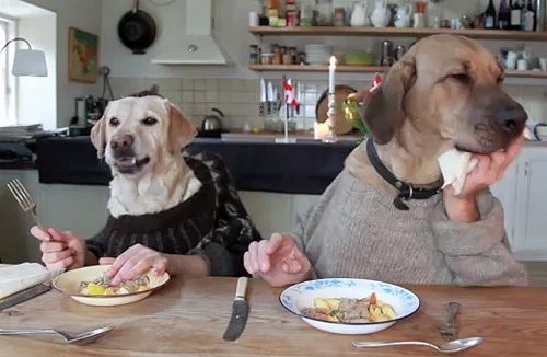 The Saturday Pet Blogger Hop/Two Dogs Dining