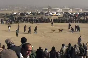 Dogfighting: Afghanistan's Popular Weekend Entertainment
