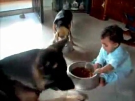Food Fight: Cute, Controversial Video Goes Viral