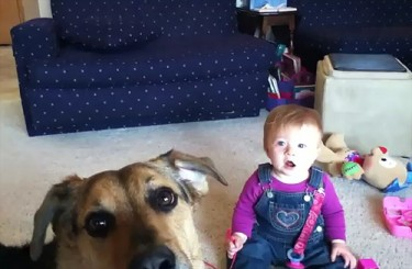 Baby Laughs Hysterically at Dog Popping Bubbles