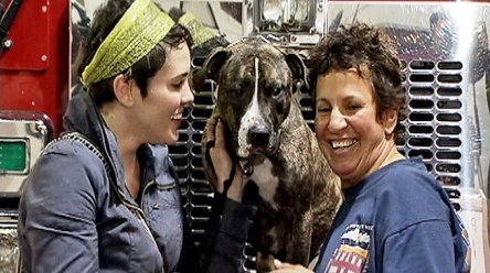 Chicago Firefighter Breathes Life Back Into Dog