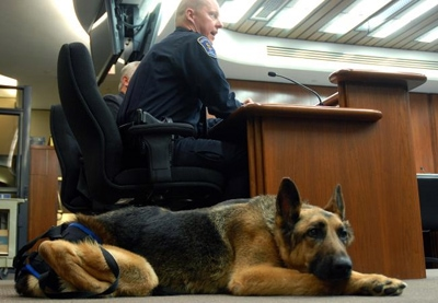 Paralyzed Police K-9 and Handler up for National Award