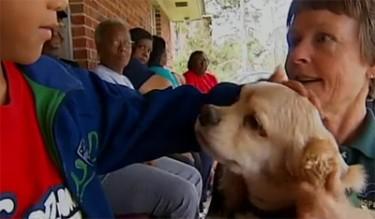 post tornado therapy dog