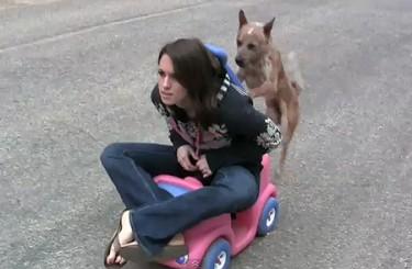 Pup Propulsion