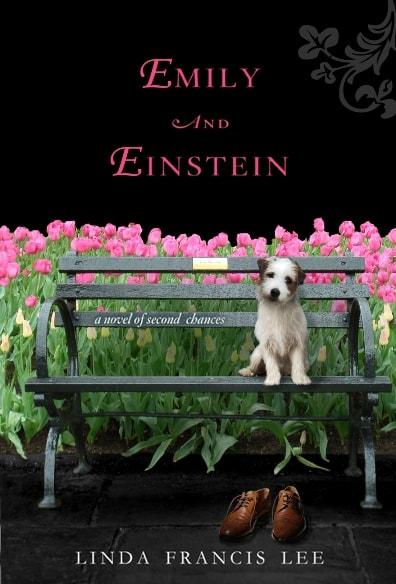 Book Giveaway: Emily & Einstein