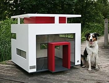 Designing Dog Mansions