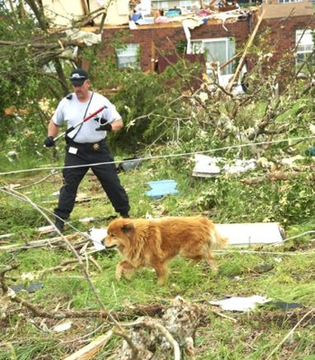 Disaster Response Team Pet Rescues