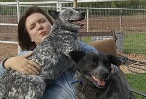 Blind Dog, Daughter Seek New Home
