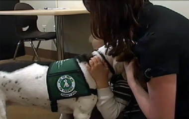 Autism Therapy Dog Works Wonders