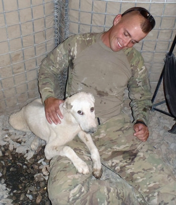 Solider on a Mission Brings War Dog Home