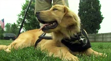 A Partnership for Life: Wounded Vet Meets New Therapy Dog