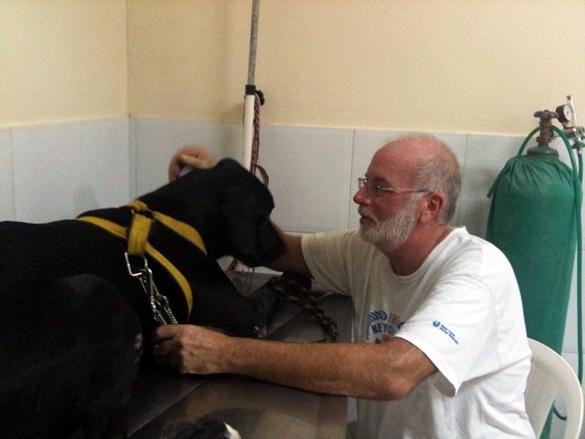 Reader Rescues: Dog Helping Dog