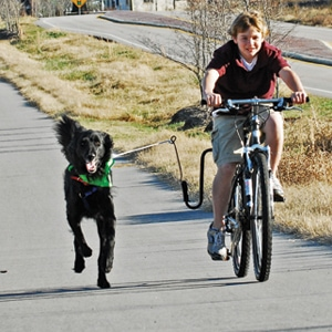 Giveaway: Biker-T-Dogs Bike Excercise Arm