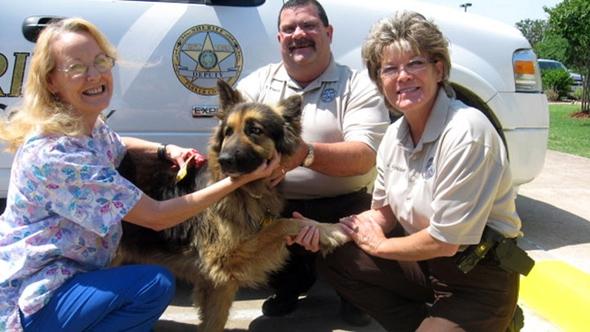Seizure Dog Goes Door to Door to Get Help, Saves Owner