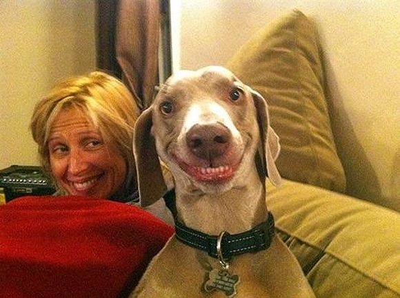 Smile Power: Grinning Pooch Pic Goes Viral