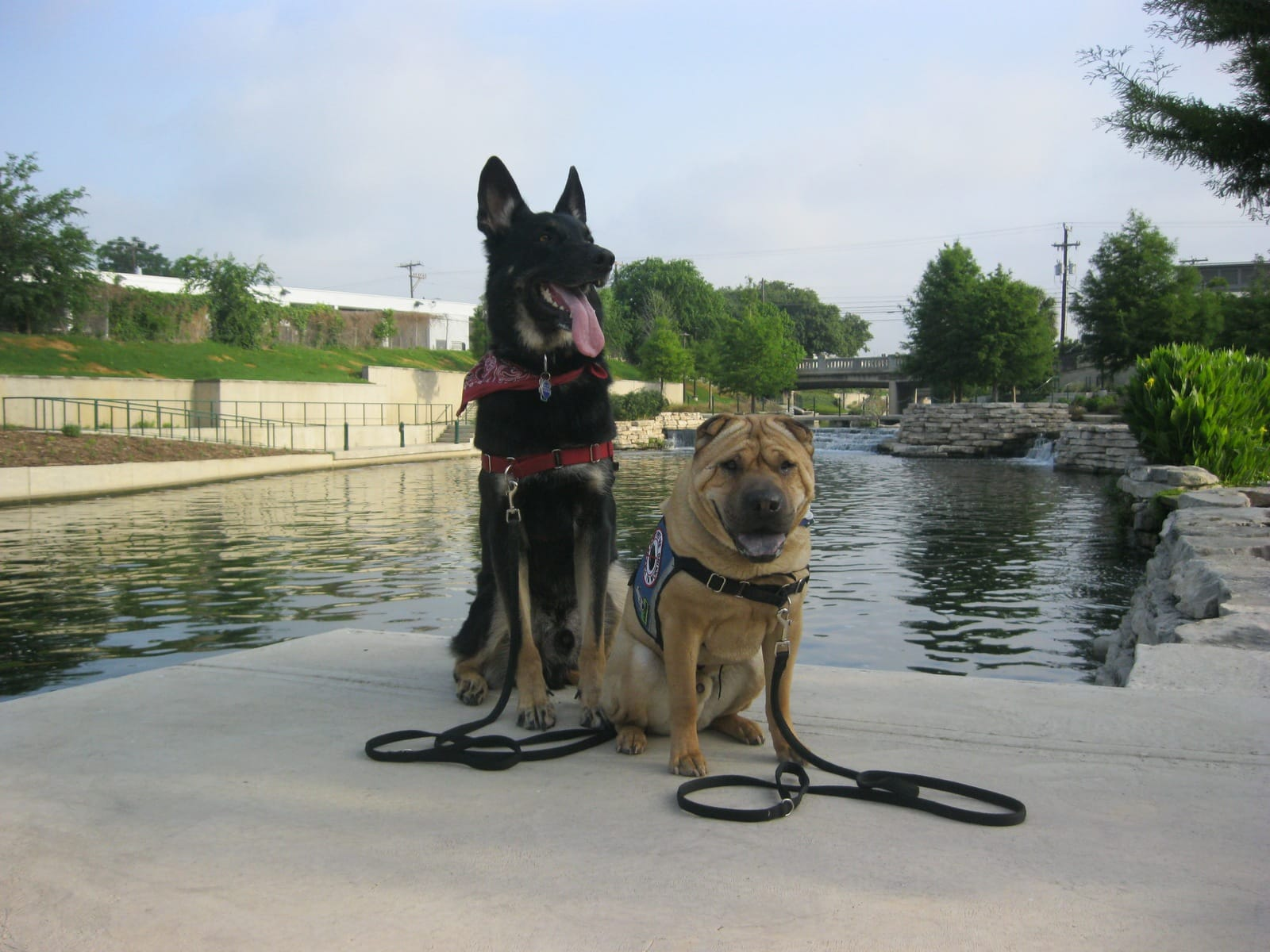 Buster And Ty On The Riverwalk San Antonio