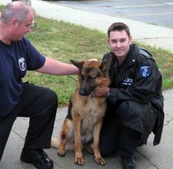 charlie - rescued dog