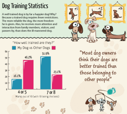 Dog Training – Facts and Figures