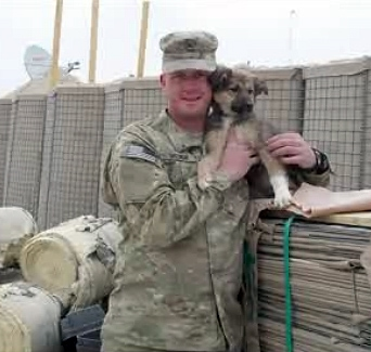 War Torn Pups Saved by US Soldiers to Arrive at JFK