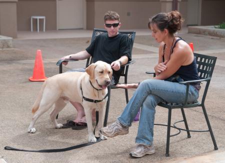 Hawaii Fi-Do Dog Therapy
