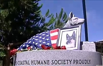 Memorial Held for Hero War Dog
