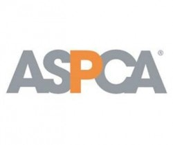 "ASPCA Launches National ""No Pet Store Puppies"" Campaign"