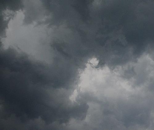 Detroit, Cleveland Under Cloud of Dog Poo Bacteria