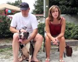 PETS Inc. Celebrates 40,000 Adoptions