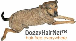 Manufacturer Introduces New Line of Dog Hairnets