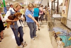 17,833 Pets Saved During Recent PetSmart Charities Adoption Weekend