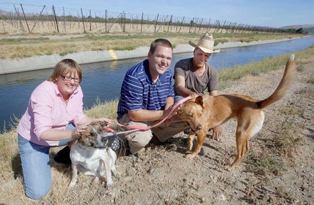 Good Samaritan Lassos Drowning Dogs
