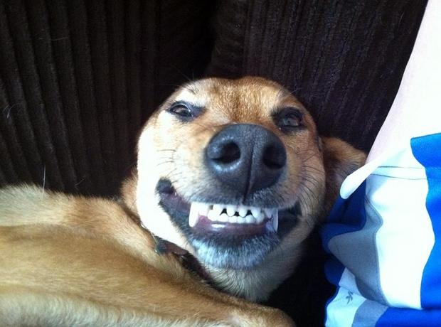 Jada Says Cheese