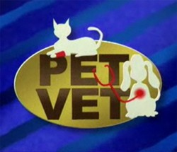 Pet Vet Discussion: Ear Problems in Dogs and Cats
